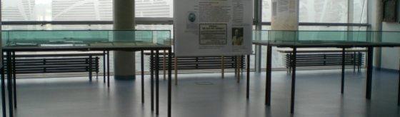 grafische Struktur durch Vitrinen und Fensterfront im Johanna-Stahl-Zentrum